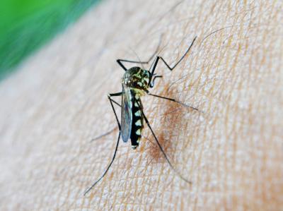Repelenty proti klíšťatům a komárům